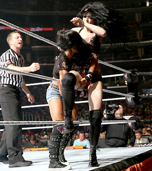 Summerslam Digitals 8/17/14