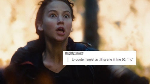 Hunger Games fond d'écran possibly with a portrait called The Hunger Games | Tumblr Text Post