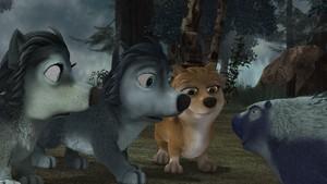 The Pups (AO4)