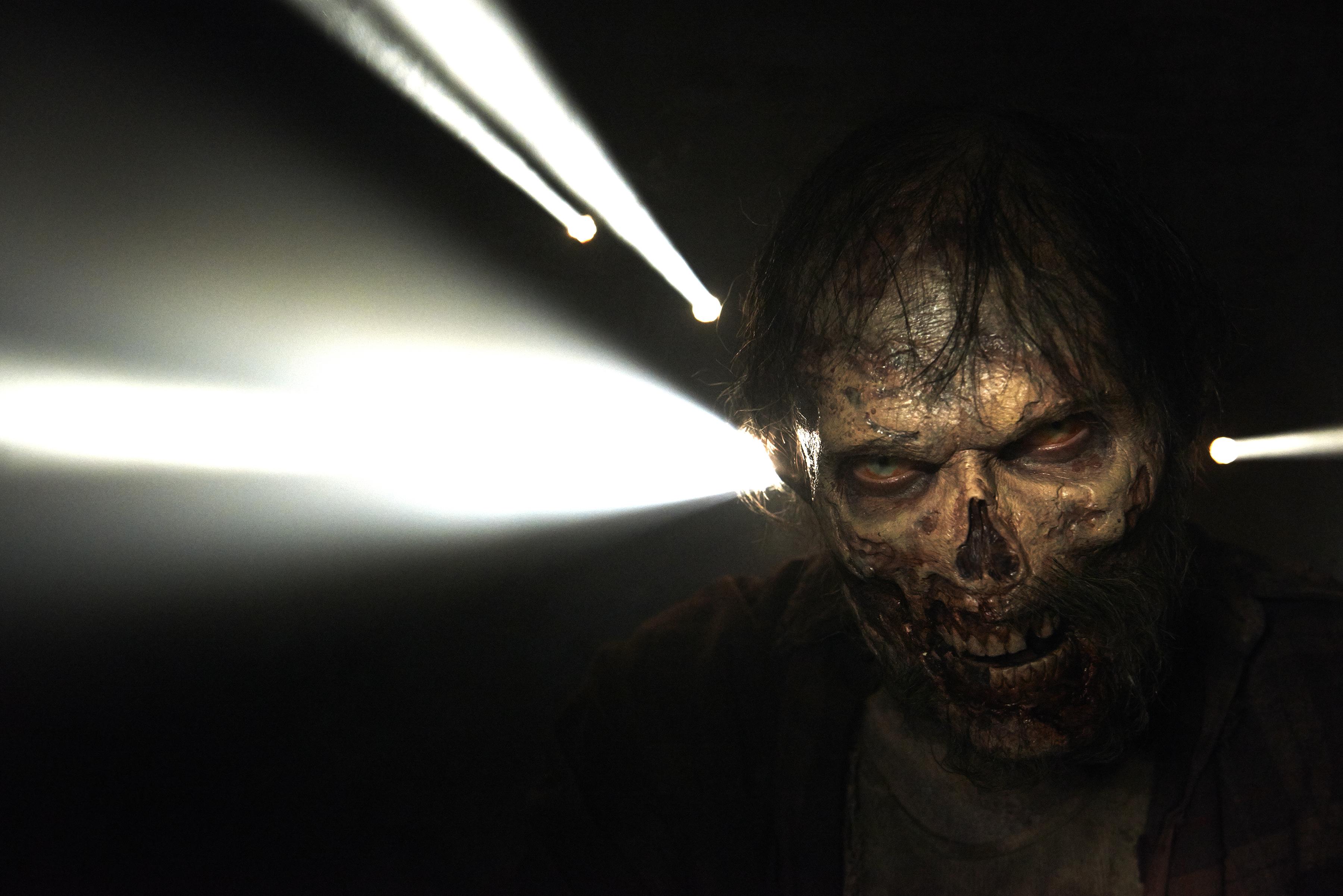 The Walking Dead Images The Walking Dead Season 5 Hd Wallpaper And
