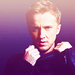 Tom Felton♥ - tom-felton icon