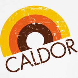 Whatever happened to Caldor?