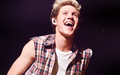 Where We Are Tour - Niall Horan