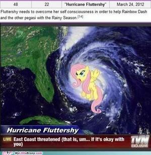 hurricane fluttershy