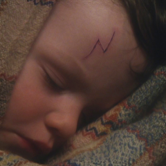Harry Potter § The Boy Who Lived