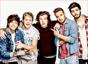 one direction,photoshoot,2014
