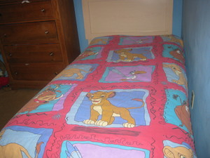 the first lion king movie blanket simba and nala