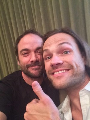Mark Sheppard: The moose that stole my phone