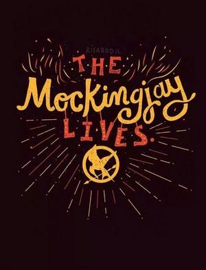 Mockingjay pt.1