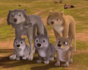 All the Little wolves!