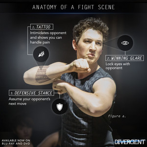 Anatomy of a fight scene (peter)