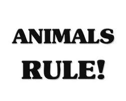 Animals Rule!