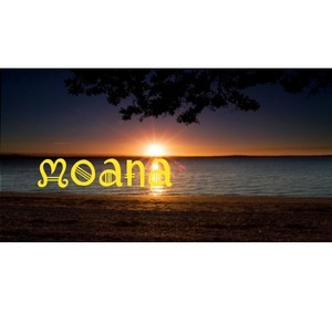 Another moana banner