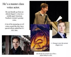 Benedict Cumberbatch - Powerpoint Presentation