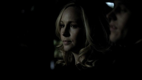 Caroline Forbes wallpaper with a portrait entitled Caroline Forbes