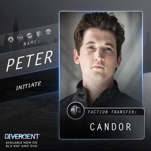 Character profile (Peter)