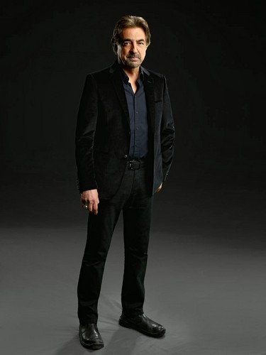Criminal Minds wallpaper with a business suit, a suit, and a three piece suit titled David Rossi