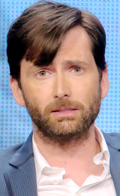 David at the Gracepoint TCA Panel