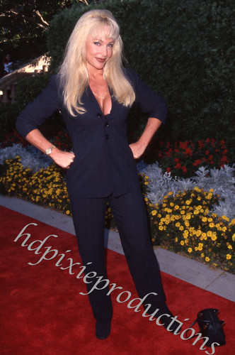 Frühere WWE-Diva… Debra Hintergrund with a business suit and a well dressed person titled Debra - red carpet Foto