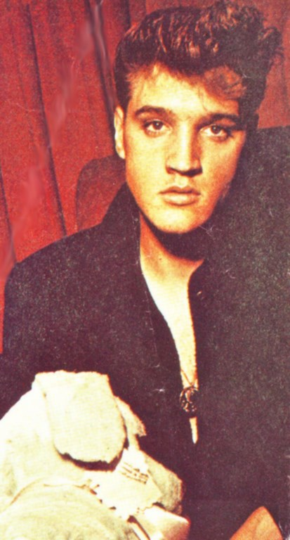 the elvis tribute essay The allmusic blog provides news, interviews, opinion, free music streams, downloads and other information of interest to a music fan.