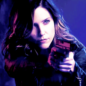 Erin Lindsay - Chicago PD season 2