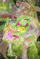 Flora: Mega Believix