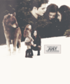 Forever is Just the Beginning - twilight-series photo