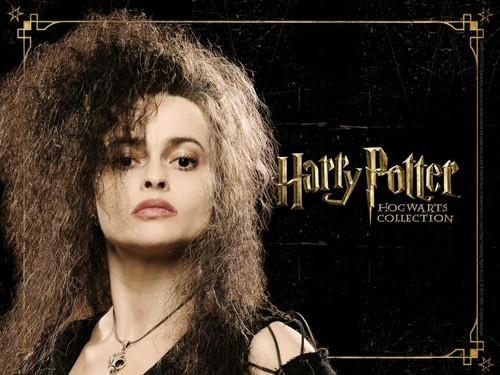 Harry Potter پیپر وال with a portrait entitled HP Hogwarts Collection