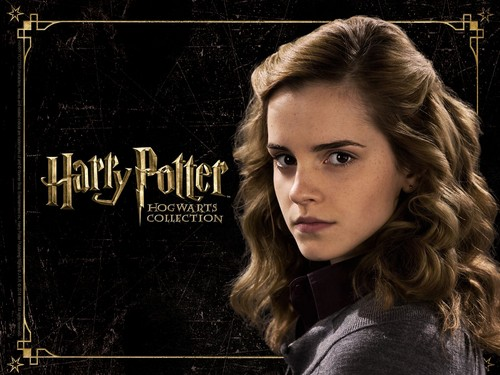 Harry Potter wallpaper containing a portrait titled HP Hogwarts Collection