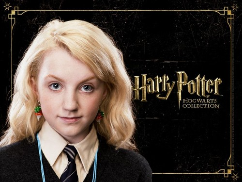 Harry Potter karatasi la kupamba ukuta possibly with a portrait titled HP Hogwarts Collection