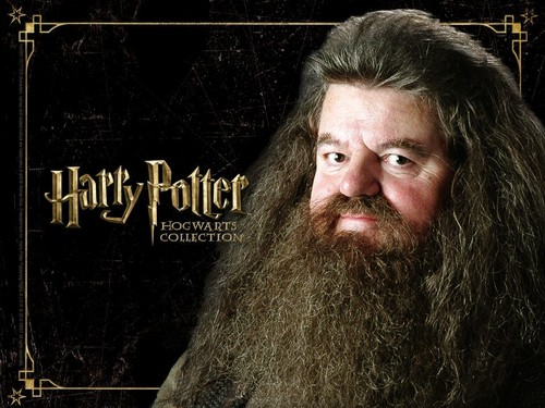 Гарри Поттер Обои possibly with a portrait called HP Hogwarts Collection