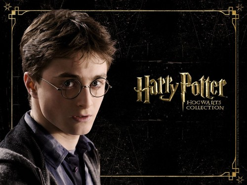 Harry Potter پیپر وال with a sign entitled HP Hogwarts Collection