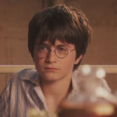 Harry Potter 💎
