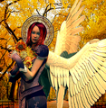 Harvest Angel - angels photo