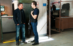 カケス, ジェイ Halstead and Hank Voight
