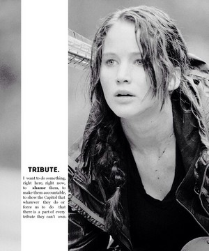 Katniss Everdeen | Tribute