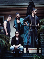 New Photoshoot - tokio-hotel photo