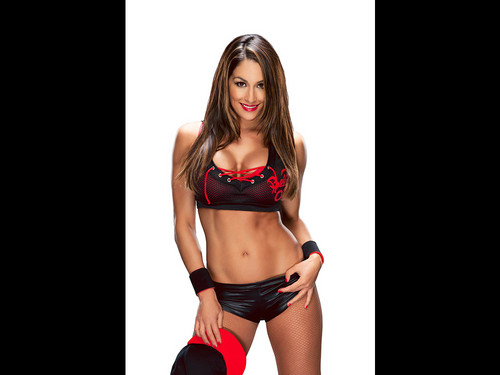 WWE Divas wallpaper entitled Nikki Bella
