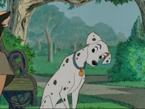 Perdita (101 Dalmatians)