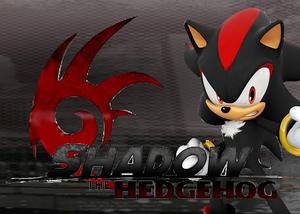 Shadow the Hedgehog's Post Card