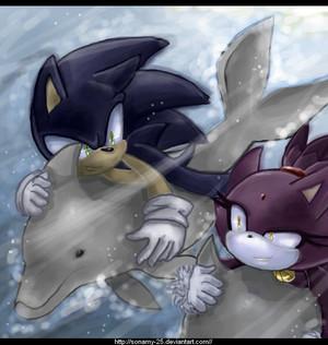 Race of Sonic Rush Adventure