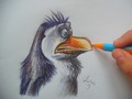 Rico quickdrawn - penguins-of-madagascar fan art