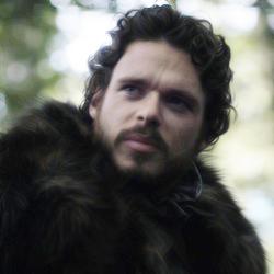 Robb Stark 图标