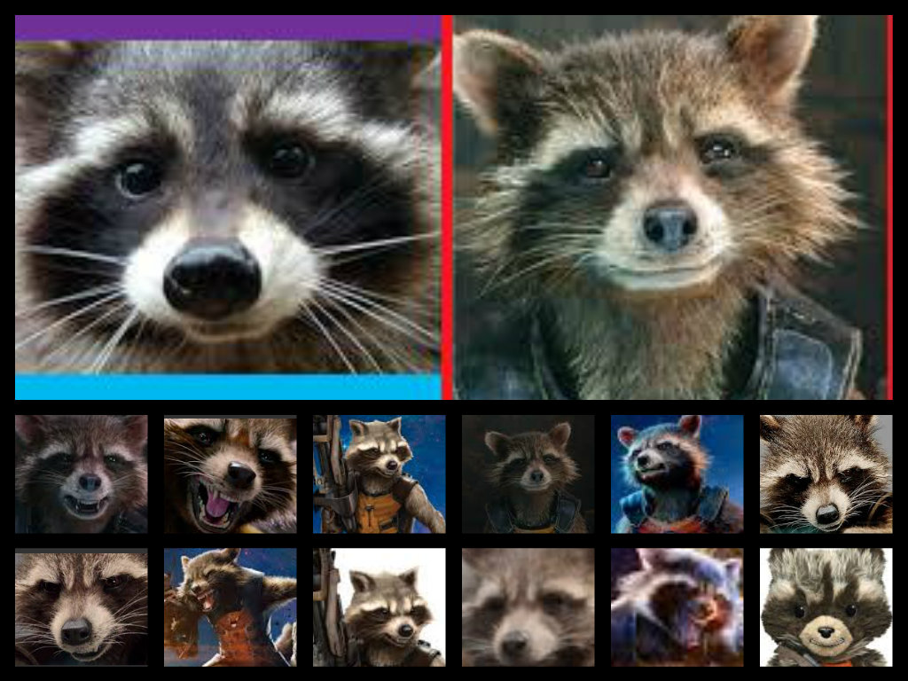 Rocket Raccoon 2014 Images Collage HD Wallpaper And Background Photos