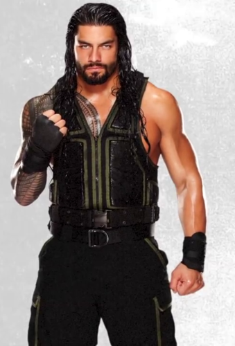WWE 바탕화면 called Roman Reigns