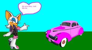 Rouge The Bat's Car