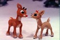 Rudolph and Clarice - rudolph-the-red-nosed-reindeer photo