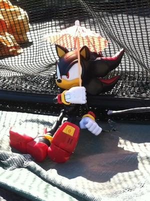 Shadow the Hedgehog with an Umbrella