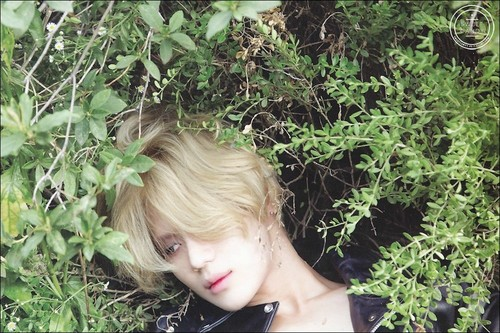 Taemin Photoshoot Ace