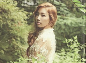TTS 'Holler' Album Photobook Scans (Taeyeon)
